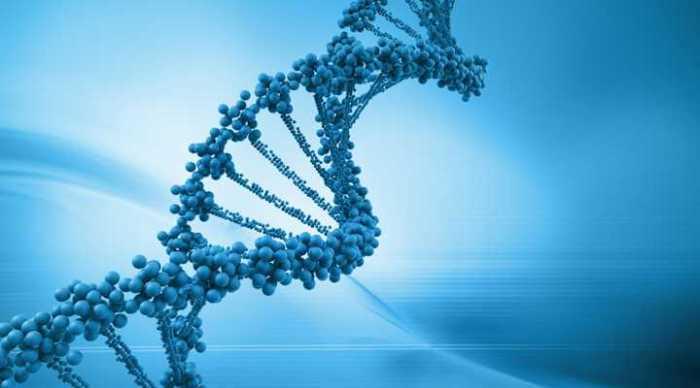 Teknolojinin Yeni Dönüşüm Cephesi :Tıp